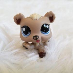 LPS Littlest Pet Shop Tan Baby Bear Cub #1555 Blue